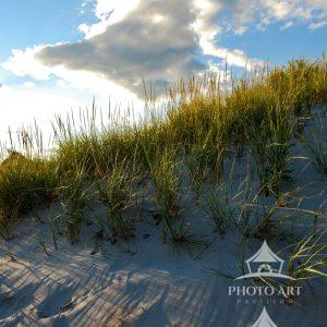 Vertical image of a semi grassy dune below a puffy cloud. Sunset shows great color and detail in the