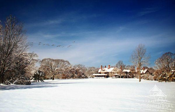 Bayard Cutting Snow Scene Panorama
