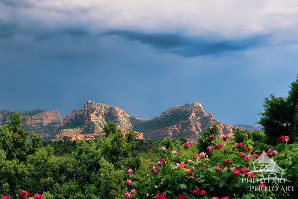Photographer: Joanne Henig Photography Date: Oct, 2014 Location: Sedona, Arizona Description: Dark