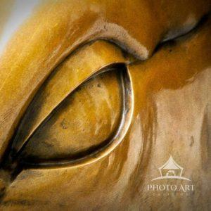 Close up view of the Charging Bull, which is sometimes referred to as the Wall Street Bull or the