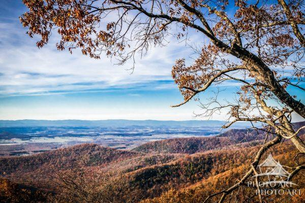 A beautiful view from one of the many overlooks along Skyline Drive in Shenandoah National Park.