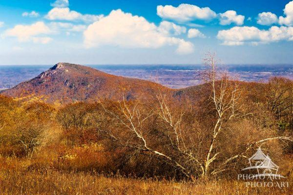 The view from one of the many overlooks in Shenandoah National Park in Virginia.