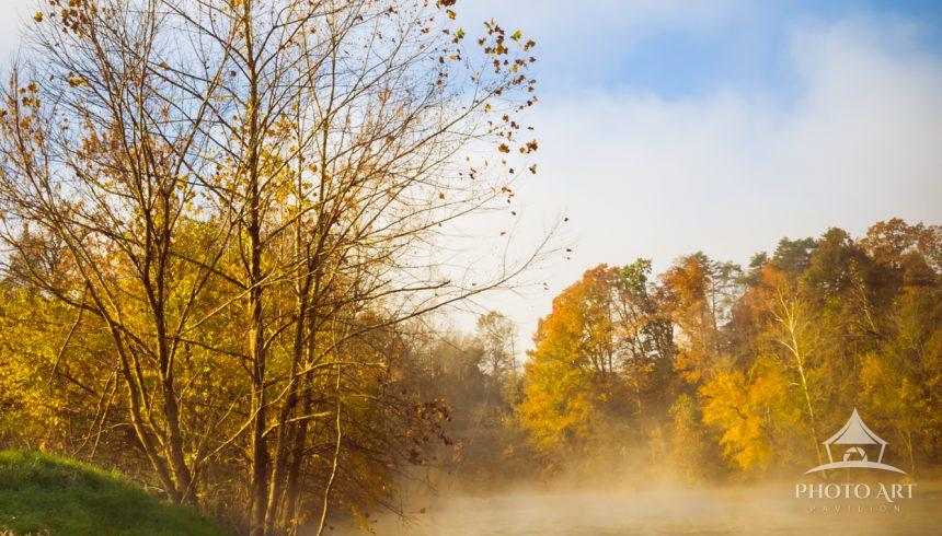 A foggy morning along a Shenandoah River tributary in Virginia. I titled this image 'Where Eagles