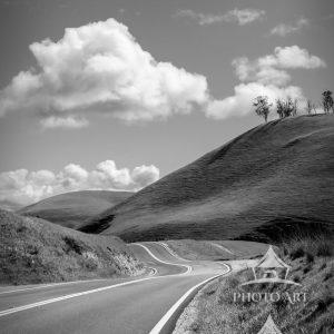 I love of winding roads and paths that lead to new places in my travels. This is Route 41 in