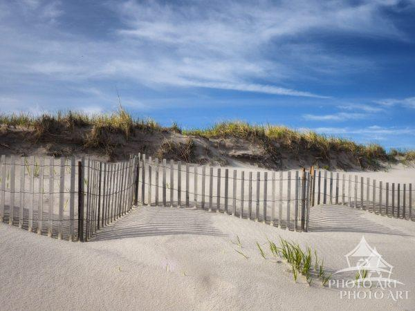 Springtime dune-scape at Smith Point beach.