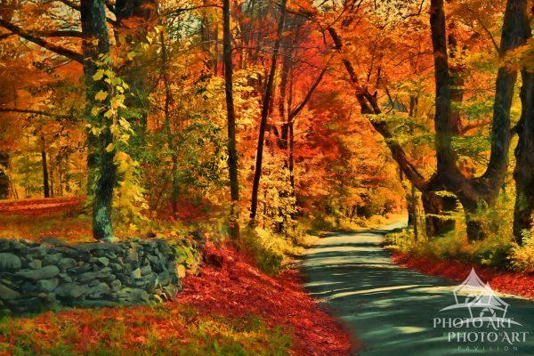 The beautiful fall colors invite you to continue around every bend on this country road in
