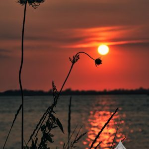 The sun fades in the background, with an orange reflection off the water creating a silhouette of