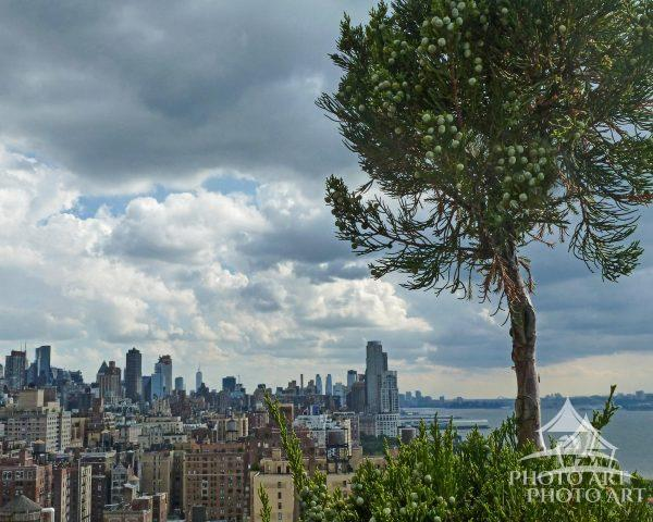 This photo is looking south from 98th and Columbus Ave with the Hudson River to the right