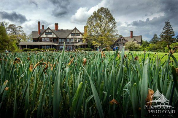 Old mansion beyond a field of grass and flowers, in between spring and summer. Color photograph with