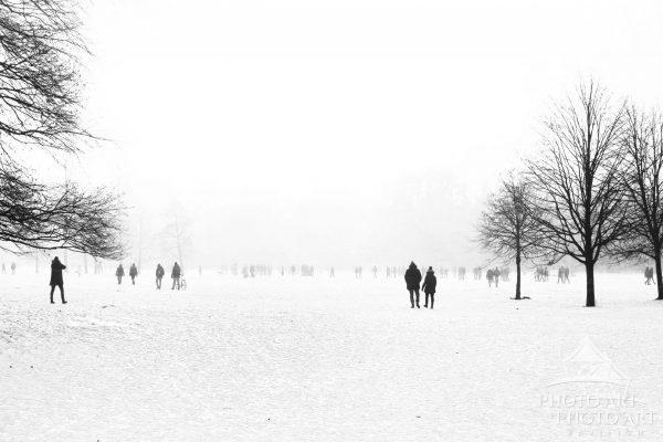 Winter scene in English Garden - Munich, Germany