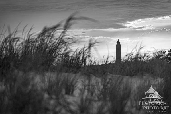 I love how the water tower peeks through the dune grass. Plus the perfect timing of the seagull