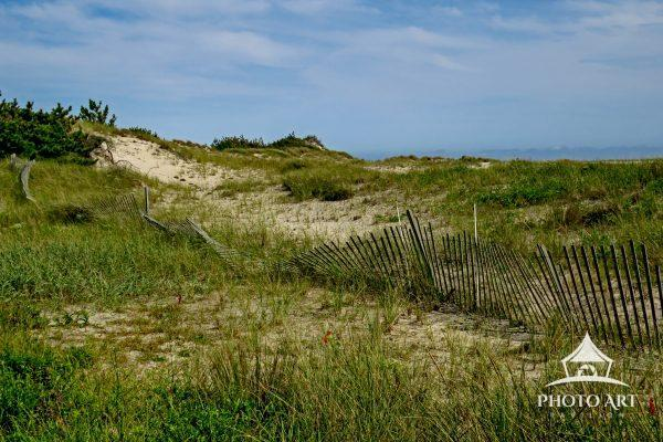 This fence was supposed to be a barrier from people entering the dunes, but is becoming ineffective