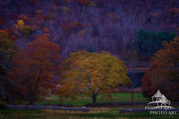 Stone Walls in the countryside of Northwest Connecticut in Autumn