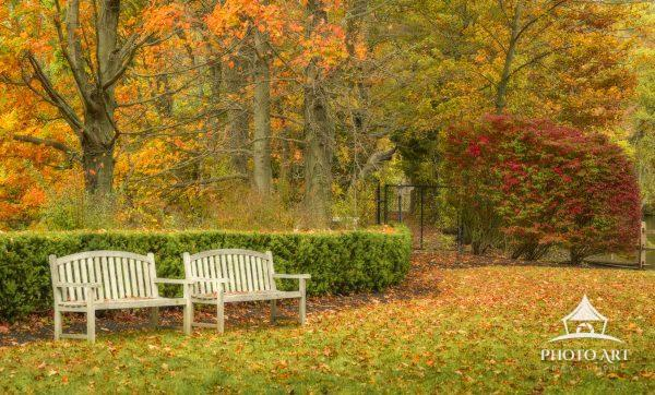 Sit down and immerse yourself in the beauty of autumn.