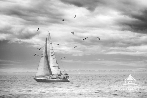 Sailboat coasting along under amazing clouds on a summer day in the Great South Bay. Off the coast