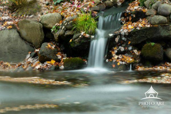 Waterfalls are so beautiful and many are surprisingly close to home. This one was in Heckscher Park.