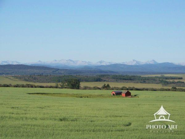 A red barn in a green pasture with a snow covered mountain range in the distance. The photo was
