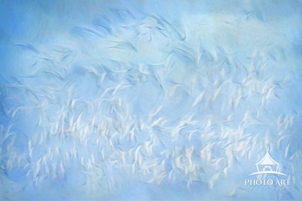 A motion blur of large flock of geese in flight against blue sky at Bosque Del Apache, New Mexico.