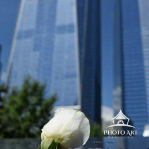 A single white rose rests in memory of a family member lost on 911.