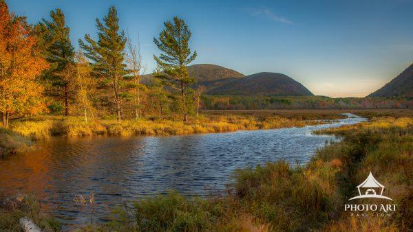 Late afternoon across the Great Meadow in Acadia National Park