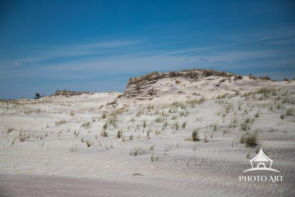 Moses Dunes