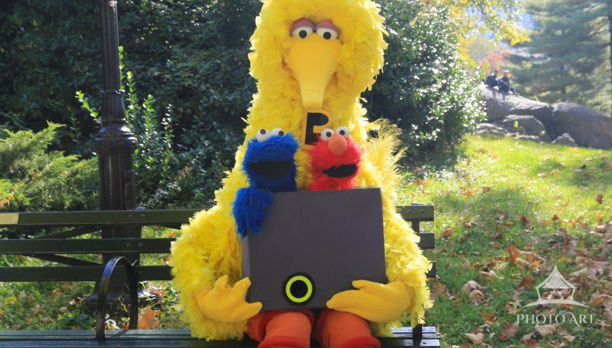Big Bird and friends enjoying Central Park, NYC on a pretty Fall day.