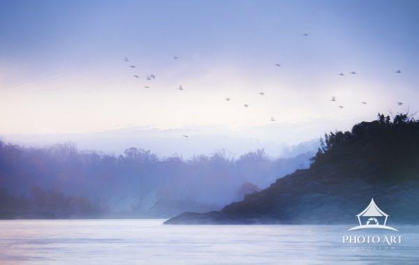 A mysterious blue morning mist hangs over the island where eagles fly from at the Conowingo Dam,