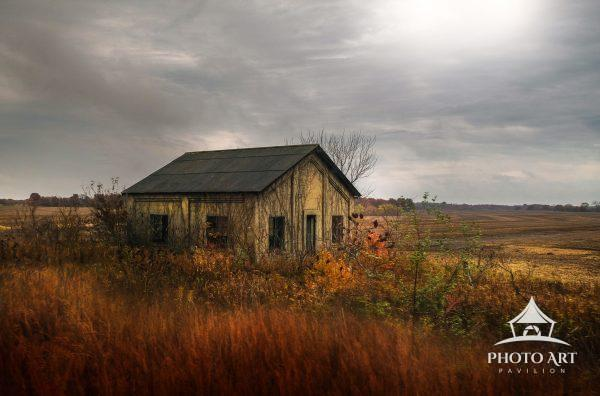 Old shack being over-taken by the grass and shrubs, left to decay in the countryside. Full of autumn