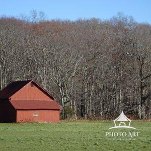 Red barn near the bare woods in the winter.