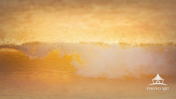 Warm light hits a wave coming into shore at Island Beach State Park, New Jersey in winter.