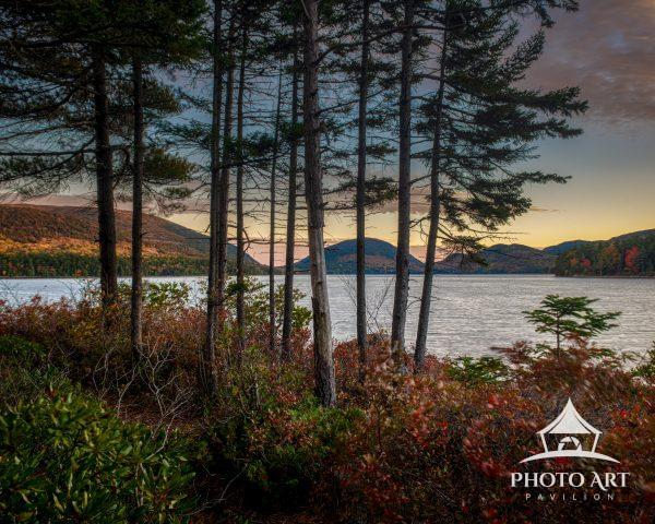 Woodland views across Eagle Lake in Acadia National Park