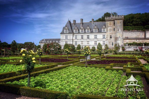 The lush gardens of the Chateau de Villandry in the Loire Valley of France.
