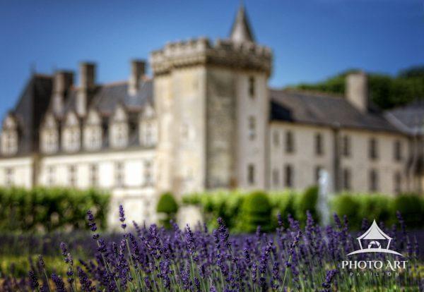 Beautiful purple flowers in bloom in front of the Chateau de Villandry in the Loire Valley of