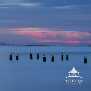 Gulls settle in for the night as twilight leaves the Great South Bay.