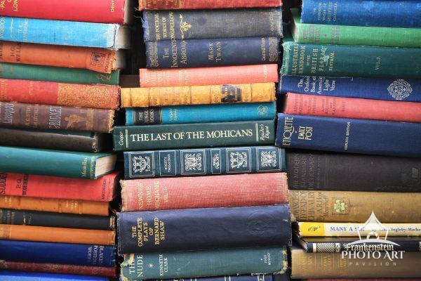 The Last of the Mohicans book in the middle of other books at the vintage market in London, United
