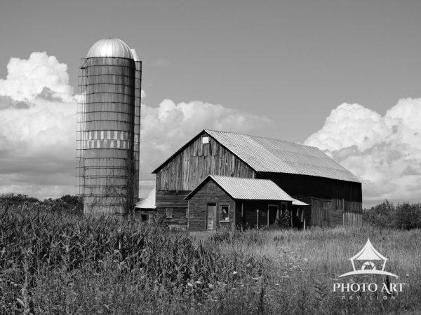 A picturesque barn and silo sit among puffy clouds on a summer day.