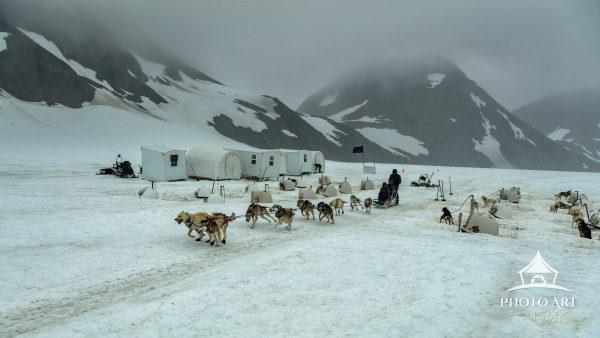 Iditarod dogs train in the off-season by pulling tourists around a glacier in the mountains of the