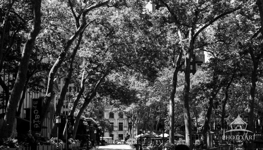 Bryant Park was especially empty during 2020's summer of COVID