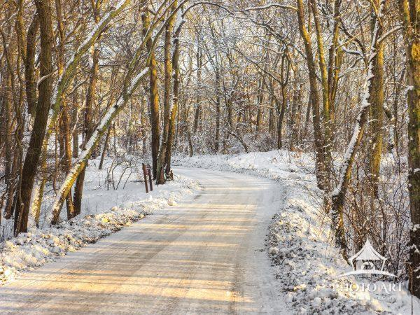 The road ahead meanders through a snowy wood at dust with miles yet to go before reaching the warmth