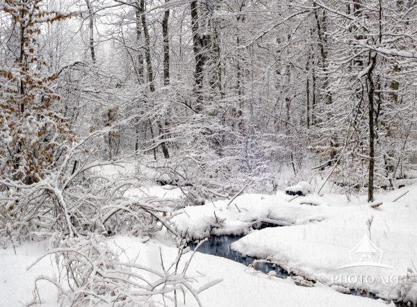 A small stream in the woods looking beautiful after a fresh snow storm in Pennsylvania.