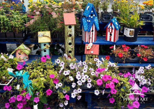 Walking through the town of Montauk Point I was drawn to these colorful birdhouses strategically