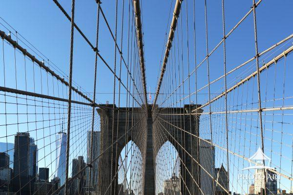 A spider web effect on the Brooklyn Bridge, Brooklyn. The Freedom Tower in the background.