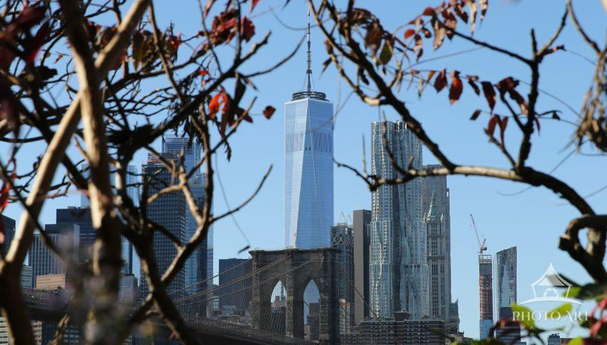 The Freedom Tower shot through the red leaves of Dumbo, Brooklyn.