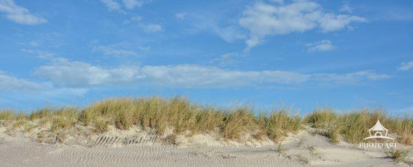Beautiful day at the beach looking up toward the beach dune.