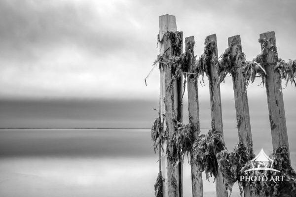 Fence along the water, with seaweed stuck to it from the previous storm. Looking out onto the Great
