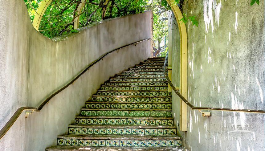 An interesting scene of hanging foliage, a ceramic tile stairway elegantly curved to draw you into