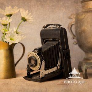 Kodak folding camera with daisies still life