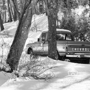 Old truck sitting in the snow, amongst the trees. Black and white photograph.