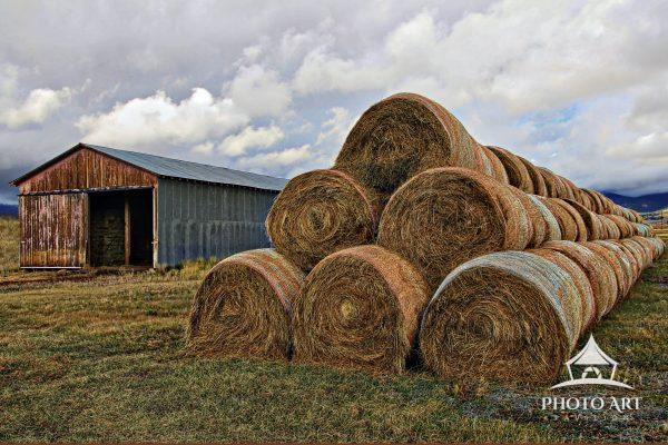 Visiting friends in rural Jefferson, Colorado rewarded us with numerous photographic opportunities.