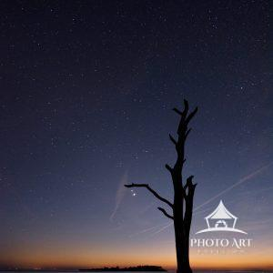 Jupiter & Saturn meet in the Great Conjunction over Asseteague Island. The closest since 1623, they